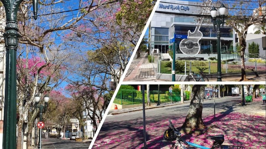 Rua Comendador Araújo e o Hard Rock Café de Curitiba.