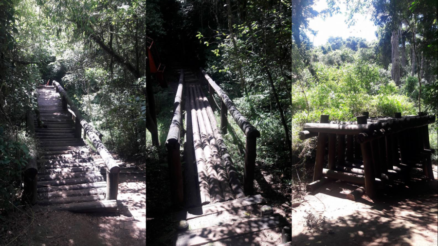 No bosque, tudo feito com troncos de árvores...