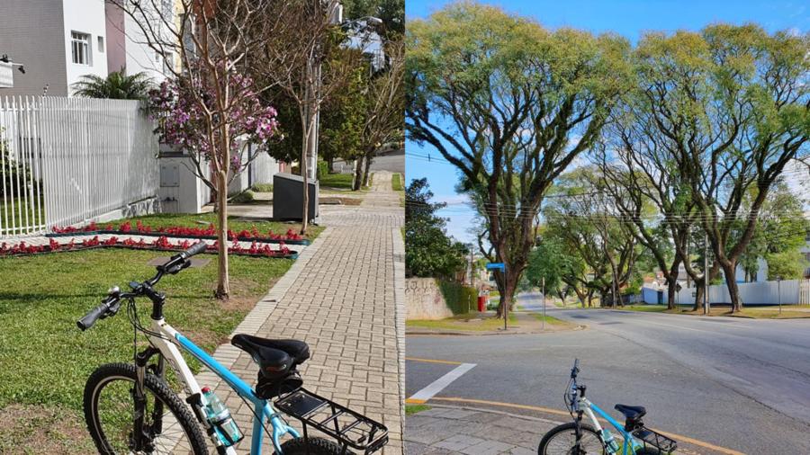As calçadas largas, gramadas, arborizadas e floridas da Vila Izabel e a Av. Getúlio Vargas com altas árvores.