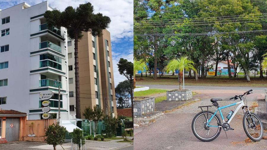 As araucárias são mantidas, impondo-se na arquitetura dos modernos edifícios. Redutor de velocidade (rua elevada com obstruções em vasos floridos).