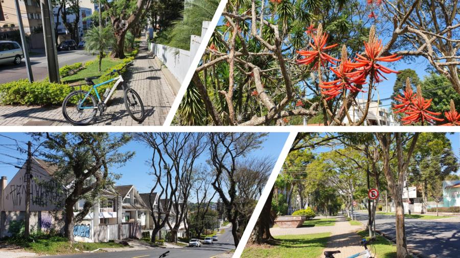 O charme das ruas, das calçadas e das casas do bairro.