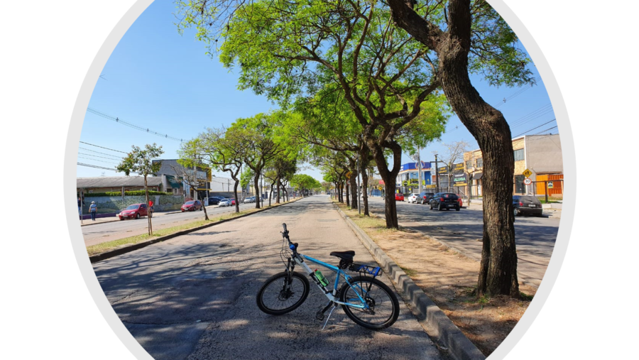 Avenida Marechal Floriano