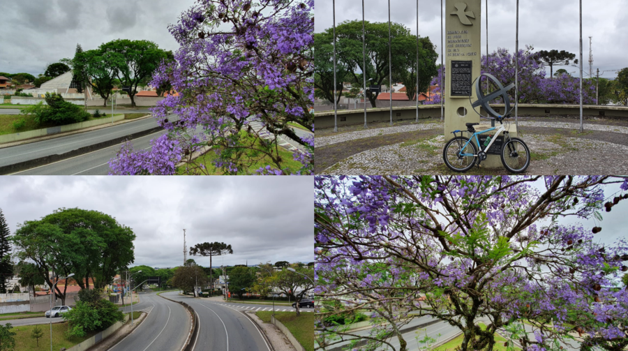 Vista do início da Av. Victor Ferreira do Amaral e monumento aos Boinas Azuis.