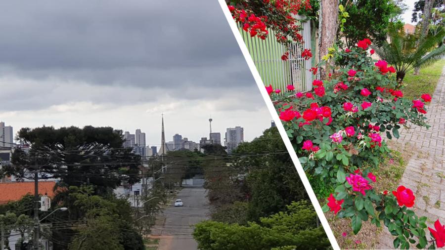 A bela vista da torre da Igreja Nossa Senhora do Rocio (que fica no bairro Rebouças)