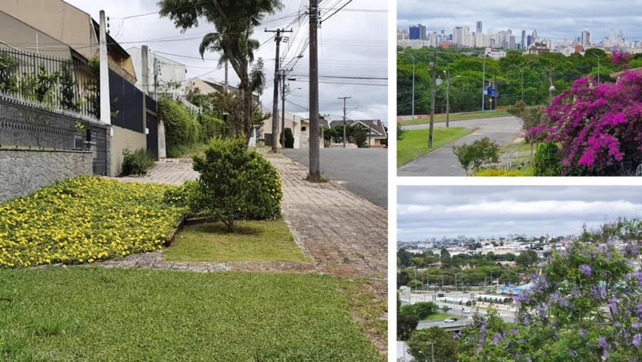 Calçadas floridas do Guabirotuba, vista da cidade e da Estação PUC-PR.