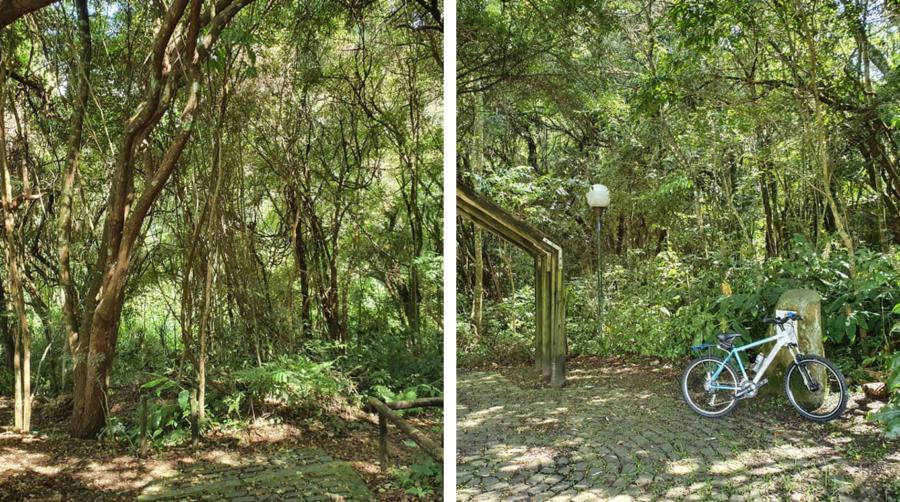Bosque Santa Paula (defronte ao Seminário).
